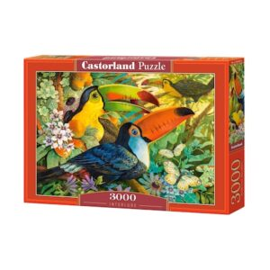 puzzle_castorland_interlude_3000_piese
